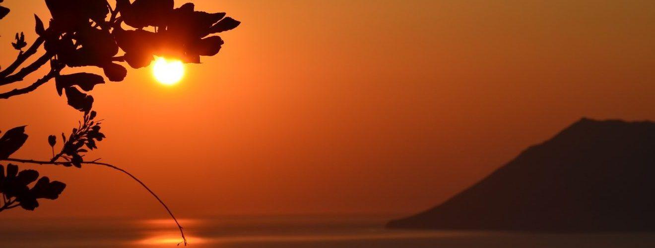 sunrise-and-trees-e1537706562386